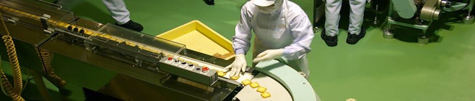 Controle de pragas na Indústria de Alimentos