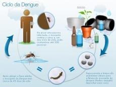 Ciclo de Transmissão da Dengue