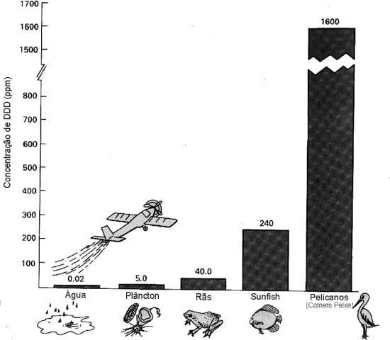 Vestigios de DDT em seres vivos (veneno utilizado indiscriminadamente)
