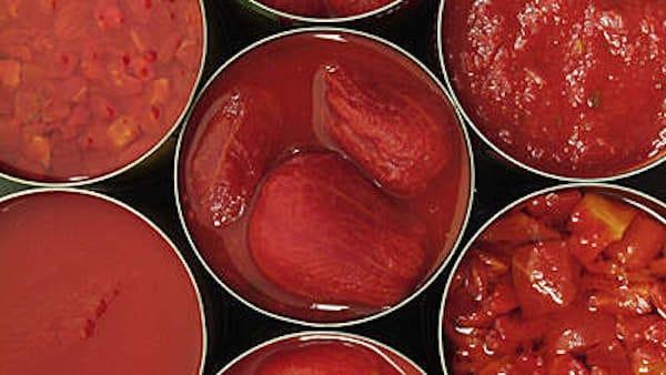 Identificação de Pragas: Industria de Alimentos