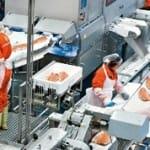 Pragas e Processo produtivo da Industria Alimentos