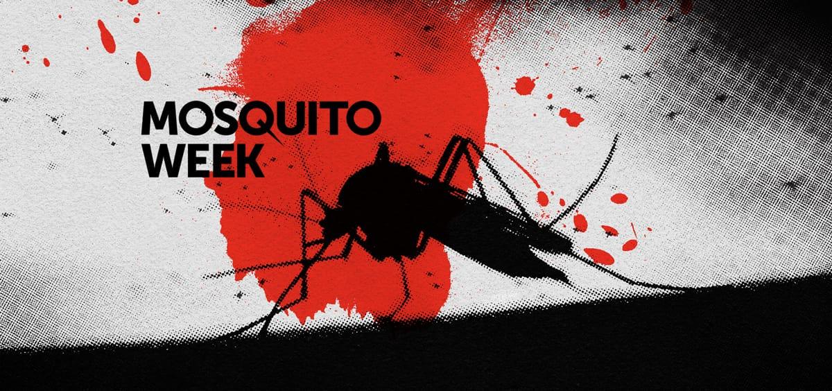 Mosquitos Matam Mais Pessoas Em Um Dia Do Que Tubarões em Um Século